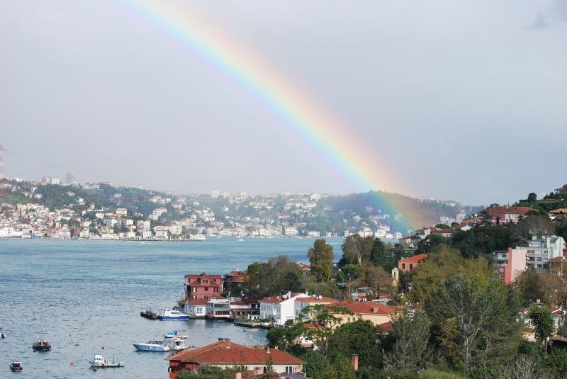 Overview of Bosphorus