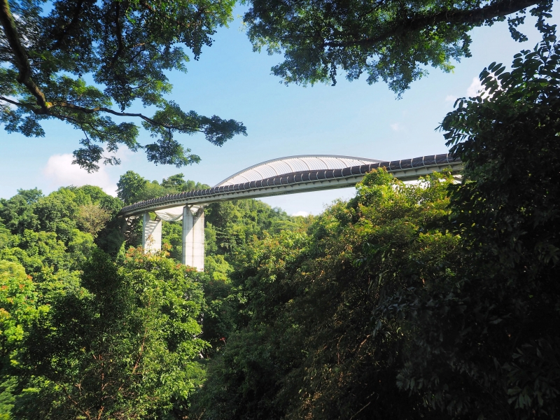 View of Henderson Waves