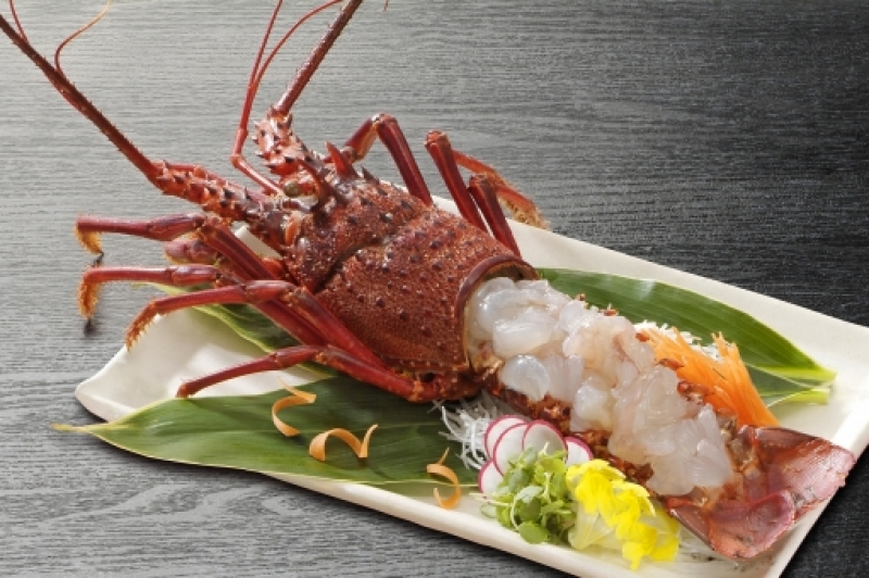The Japanese spiny lobster (イセエビ(伊勢蝦/伊勢海老), ise-ebi),[2] Panulirus japonicus, is a member of the genus Panulirus of spiny lobsters.[3] It grows up to 30 centimetres (12 in) long and lives in the Pacific Ocean around Japan, Taiwan, China, and Korea.[3] P. japonicus is the subject of commercial lobster fishery in Japan.[3] It is a popular item in high-class Japanese cuisine. Serving and preparation methods include sashimi, as a steak, frying, and roasting alive (残酷焼, zankoku-yaki).