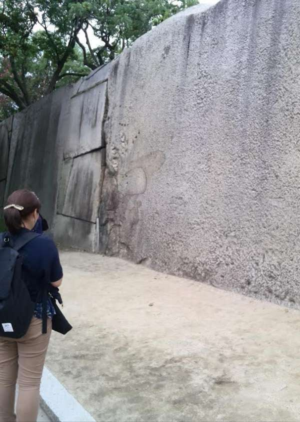 Could you find an octopus? This is one of rock hedges at Osaka Castle.