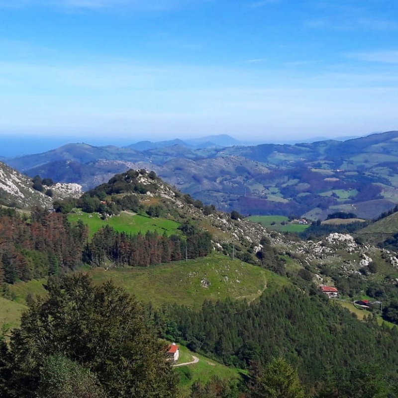 Basque Taste; Cheese & Wine  Private Tour