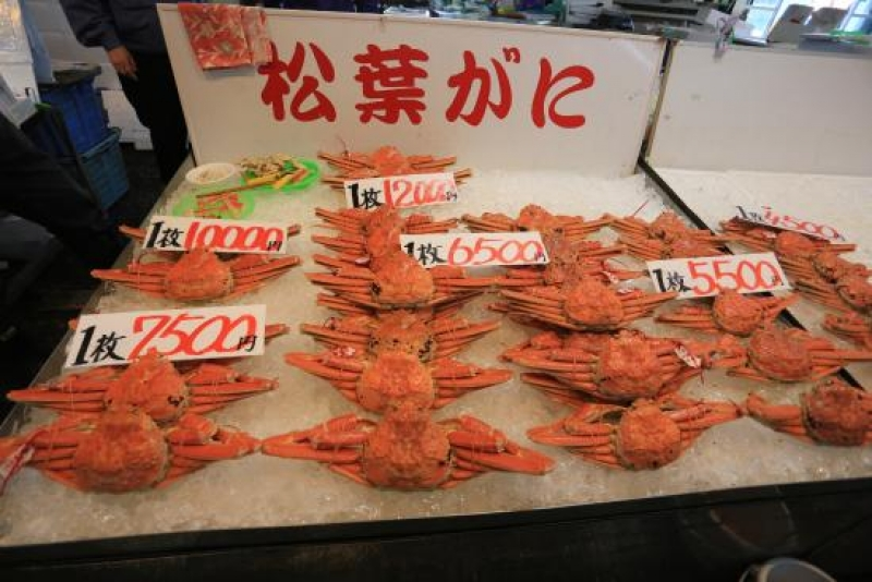 """Although Hokkaido is the most famous supplier of crab in Japan, Sakaiminato City in Tottori produces the most crab in all of Japan. Snow crabs caught in the Tottori area are called """"Matsuba crab"""", which are adult male snow crabs caught during the winter season."""