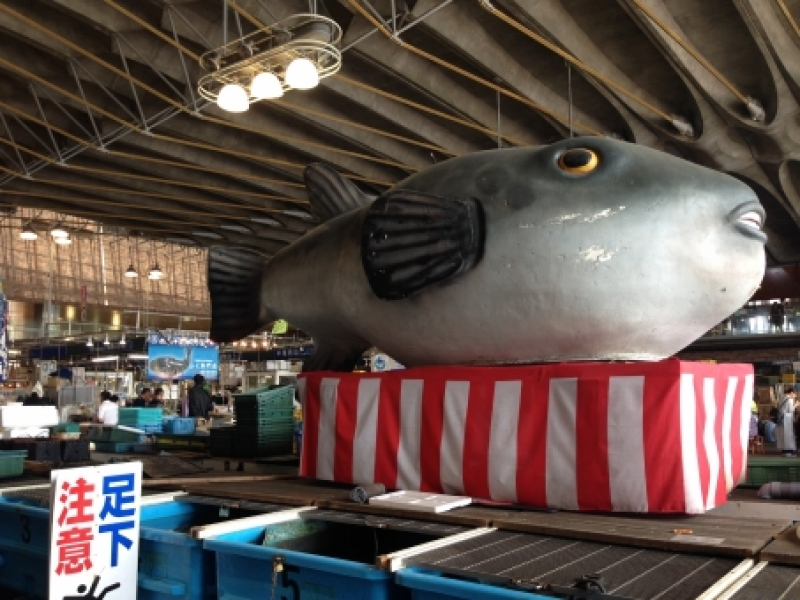 At this lively market in Yamaguchi , local fishermen sell their freshly caught fish at very reasonable prices.  Karato Market began as a street market in 1909, and now its ships fish all over Japan.