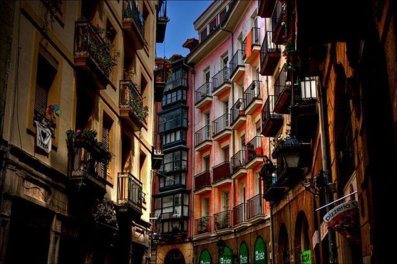 Private Bilbao & Guggenheim Museum Tour