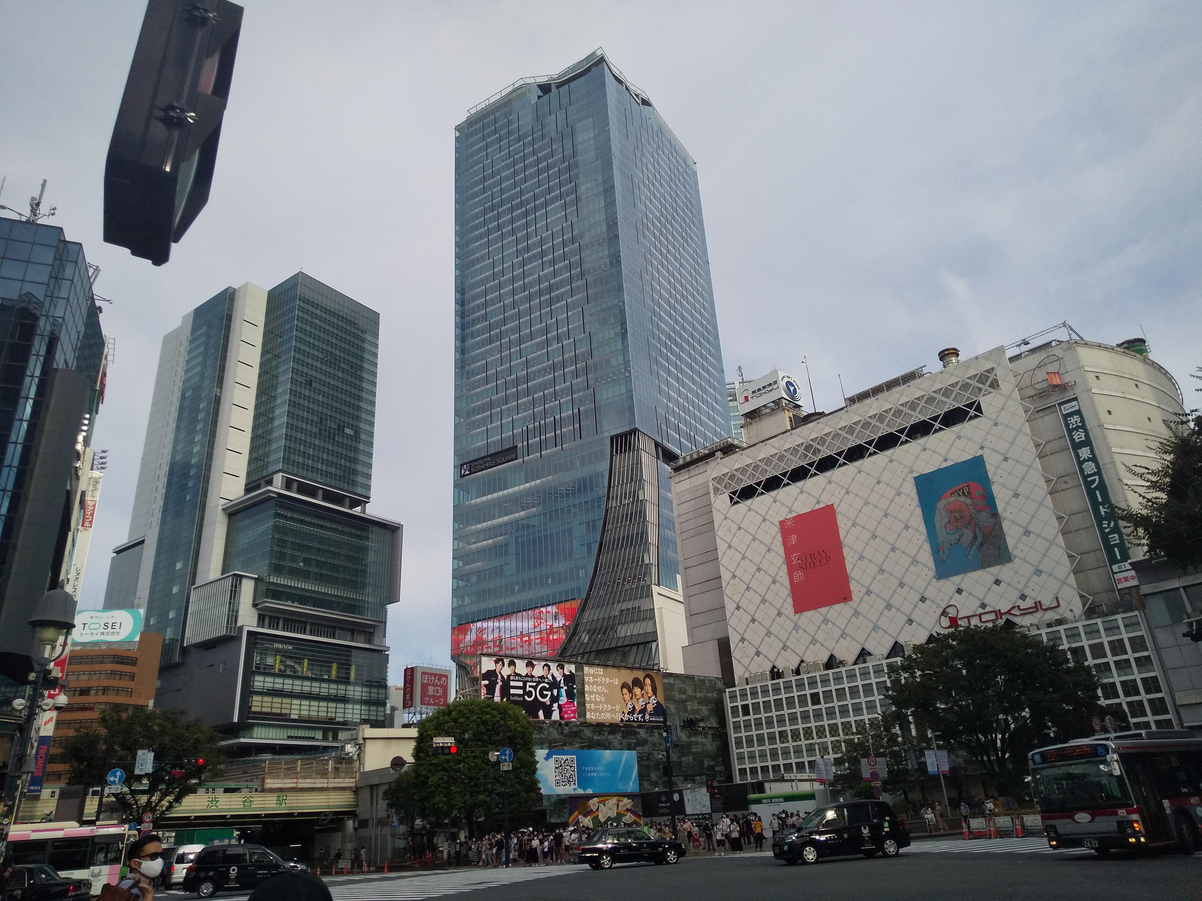 Private Virtual Tour - Tokyo Popular Spots