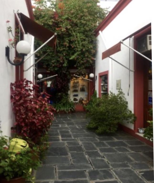 Walking tour of San Telmo