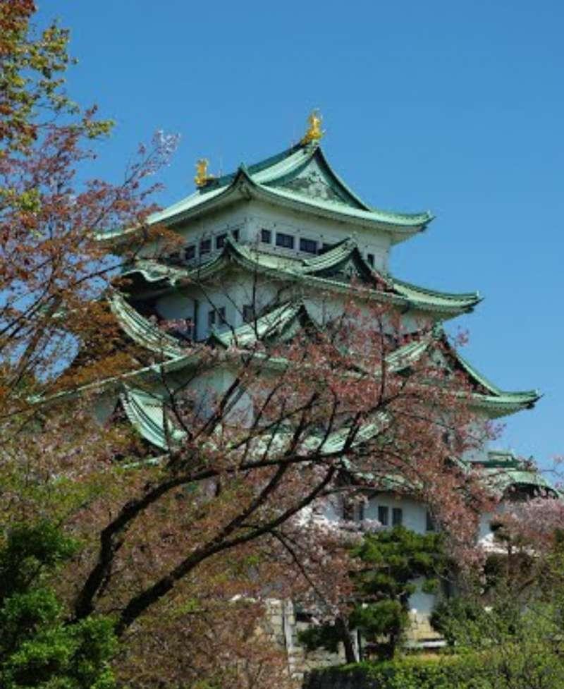 名古屋城是在江户时代作为德川家康的老九义直 和 名古屋古老的地名 尾张国的 政府而修建的。 天守阁以及本丸御殿是名古屋人的骄傲。