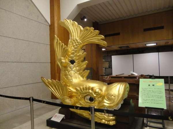 Golden Shachi