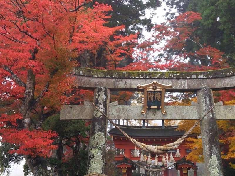 Eingang zur Bishamon-do Halle durch das Torii-Tor, der uns von der alltäglichen Welt in die religiöse Welt führt.