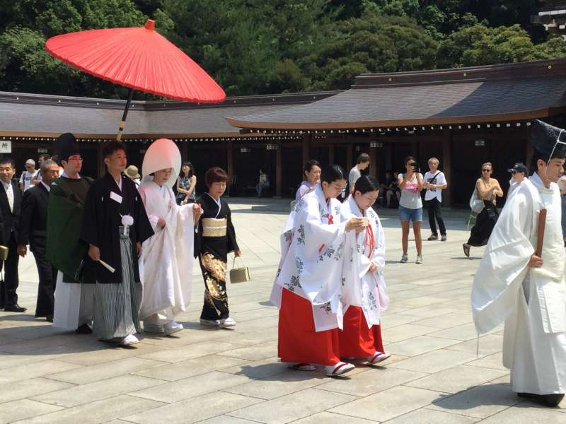 T1. Meiji-Jingu Shrine (Wedding ceremony)