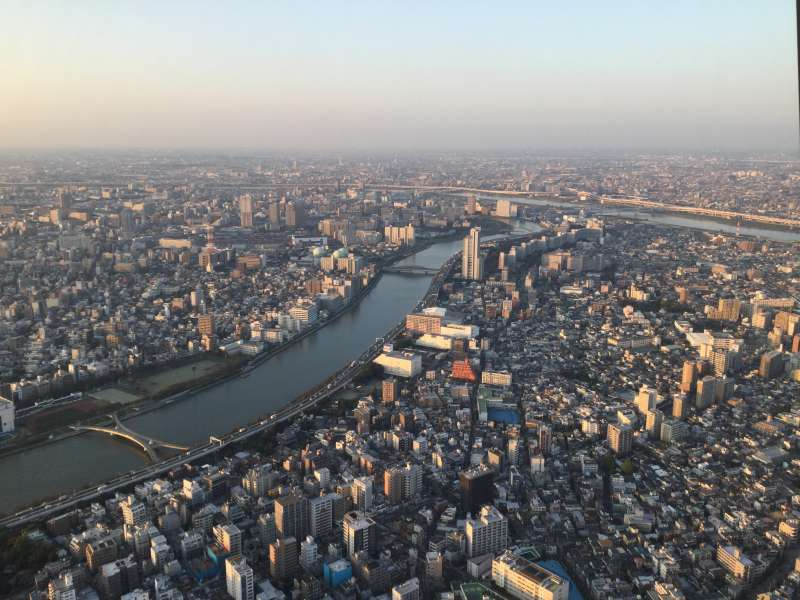 O1. Tokyo Sky Tree (from the observatory at 350 m)