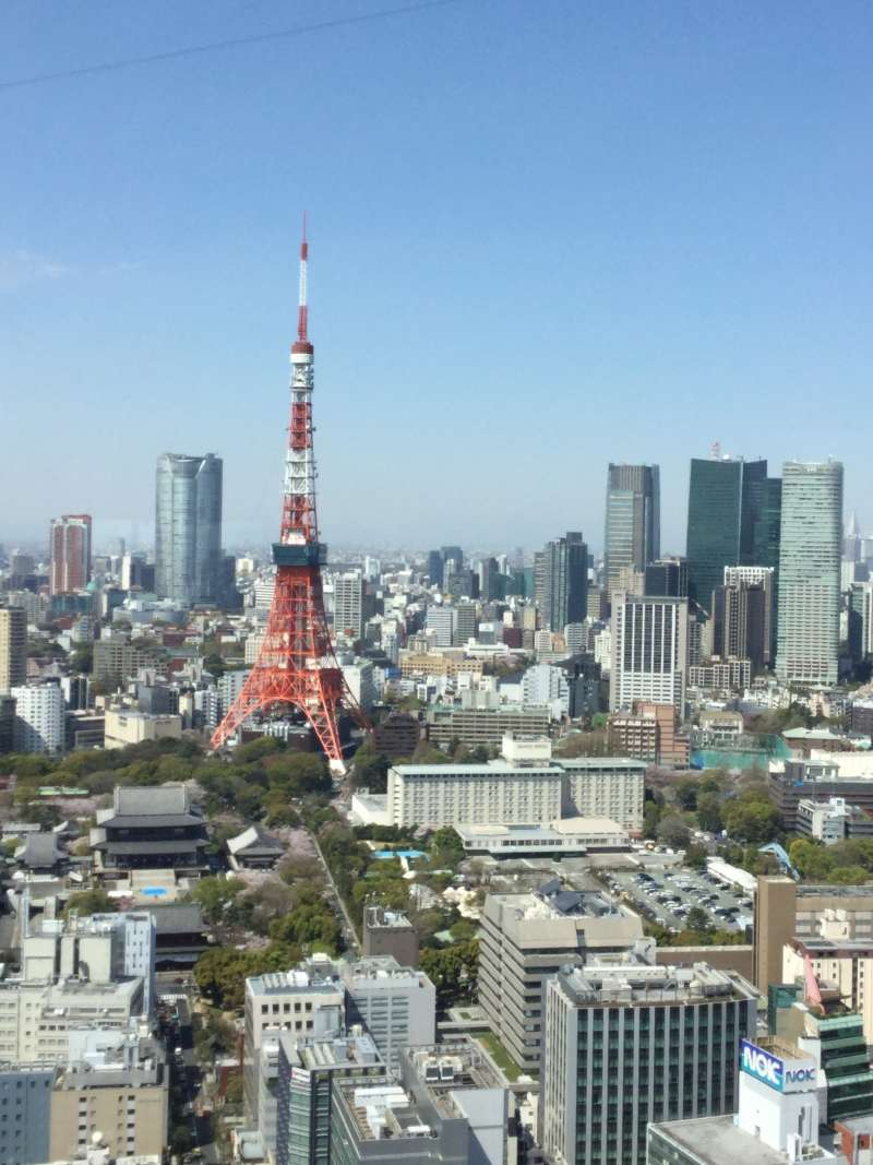 O5. Observatory of World Trade Center (View of Tokyo Tower)