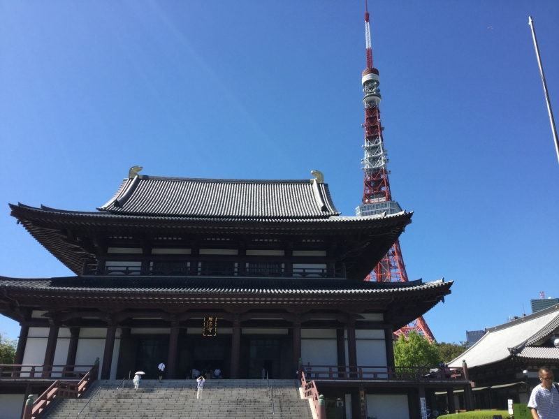 T3. Zojo-Ji Temple (Main Hall and Tokyo Tower)
