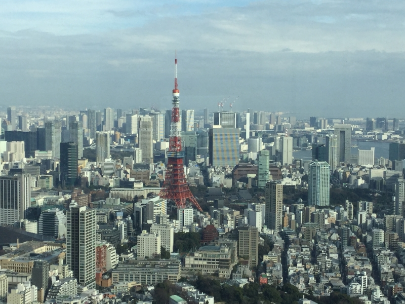 O4. Roppongi Hills Observatory (View from Tokyo City View from 270 m)
