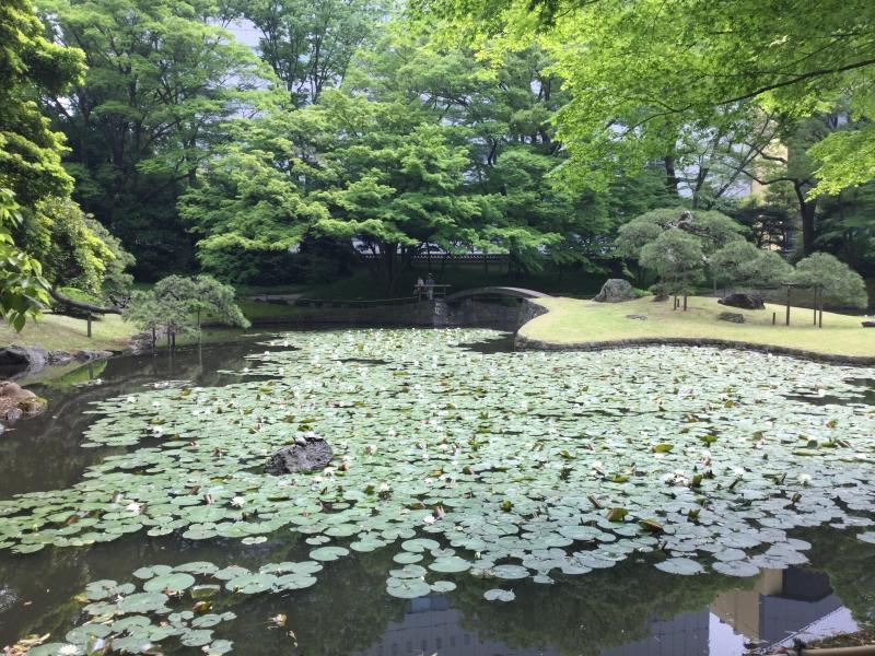 G2.  Koishikawa Korakuen Garden (Inner garden)