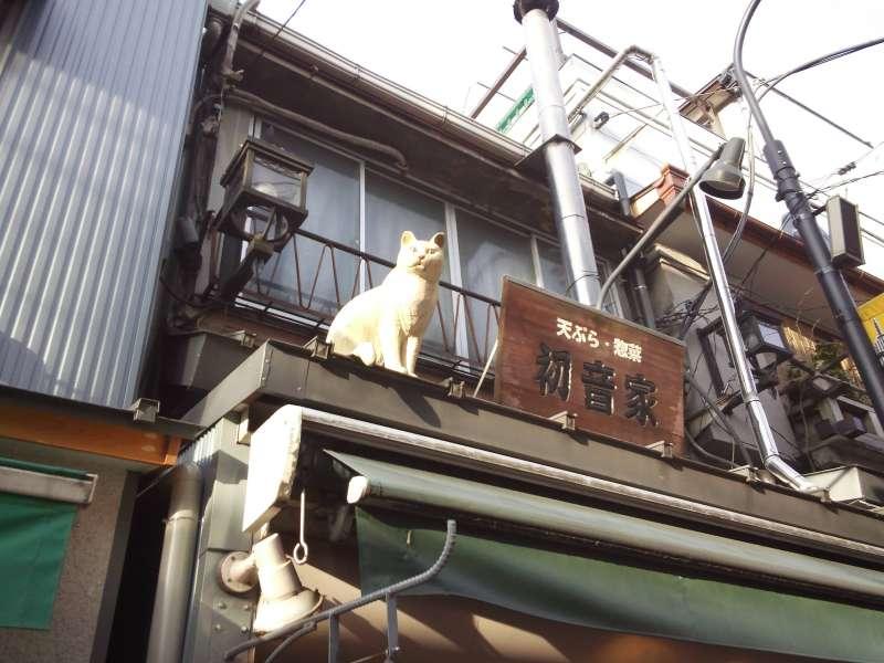 Yanaka:cats' town