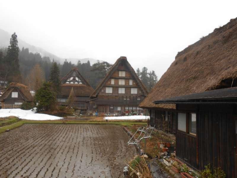 Gasho farmhouses at Shirakawago