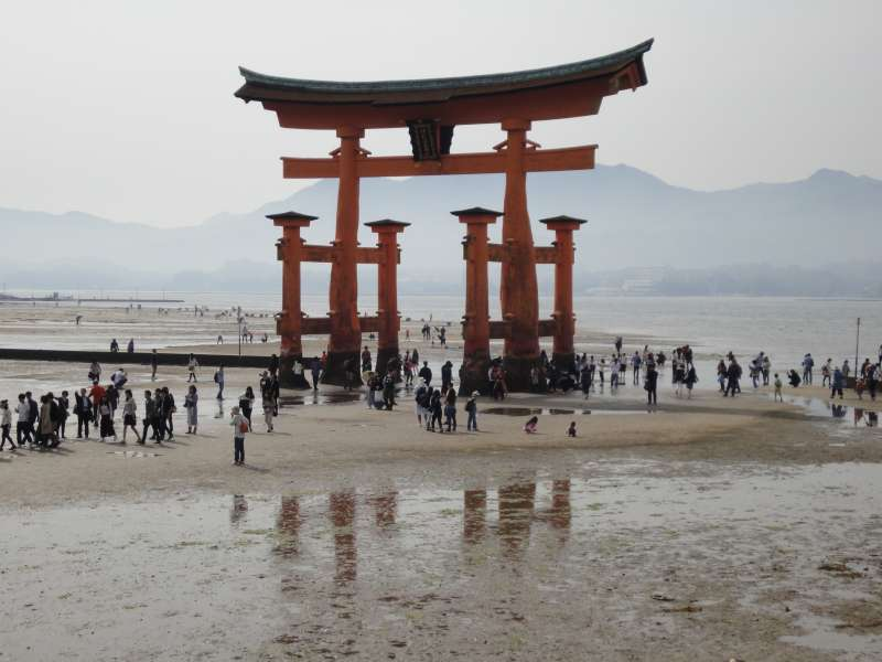 You may approach to this very famous Great Toriii Gate for the Itsukushima Shrine when the tide is on the ebb.