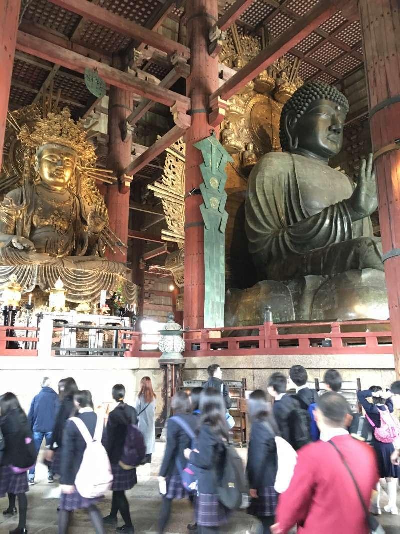 Largest statue of Buddha of Todaiji Temple
