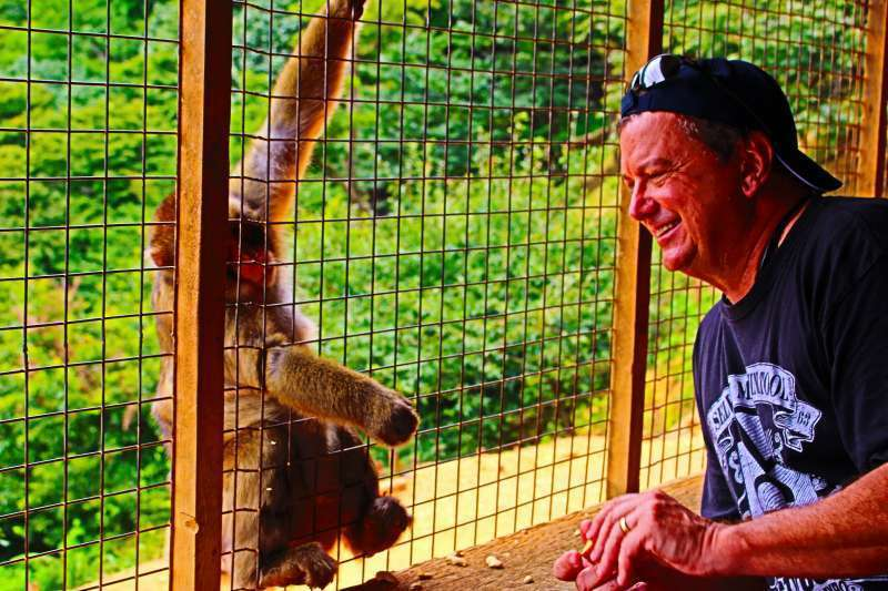 Have a close contact with a monkey.