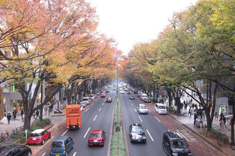 Omote-sando Street in autumn