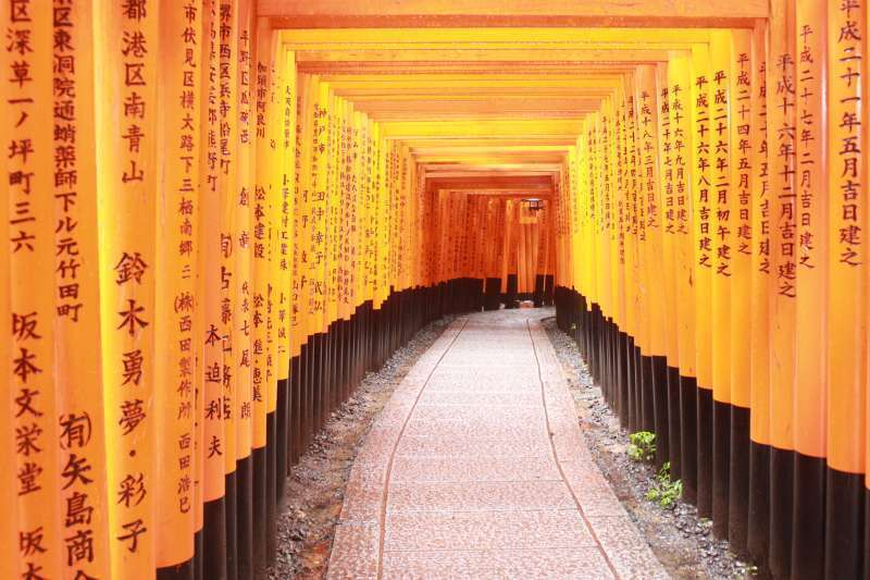Fushimi Inari shrine. the famous shrine from the Memoirs of Geisya.