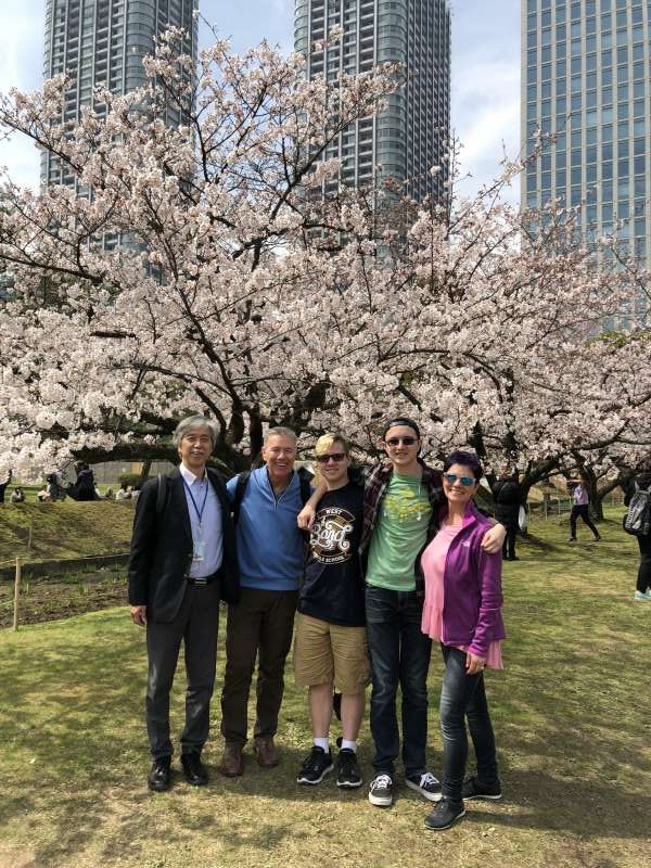 Guests from the US in the cherry trees in full bloom.