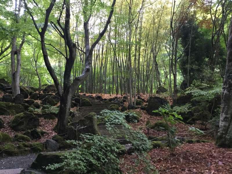 Kubota Itchiku museum of Kimono (Optional, wonderful Japanese garden, very quiet and sacred)