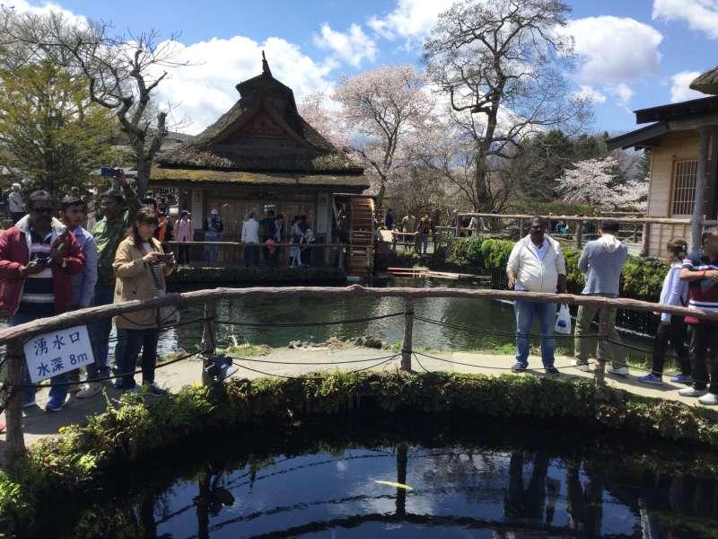 Oshino-Hakkai with clear fountains from Mt. Fuji ( Optional )