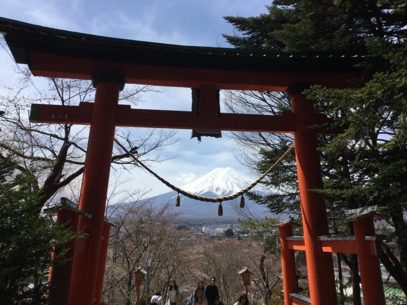Arakura-Yama Park: The view of Mt. Fuji over a Torii gate (Optional)