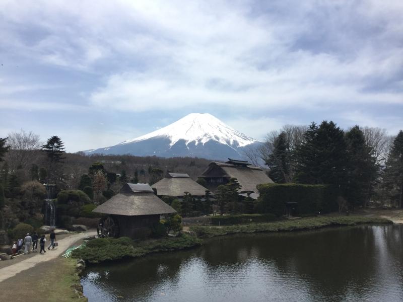Oshino-Hakkai with the view of Mt. Fuji ( Optional )