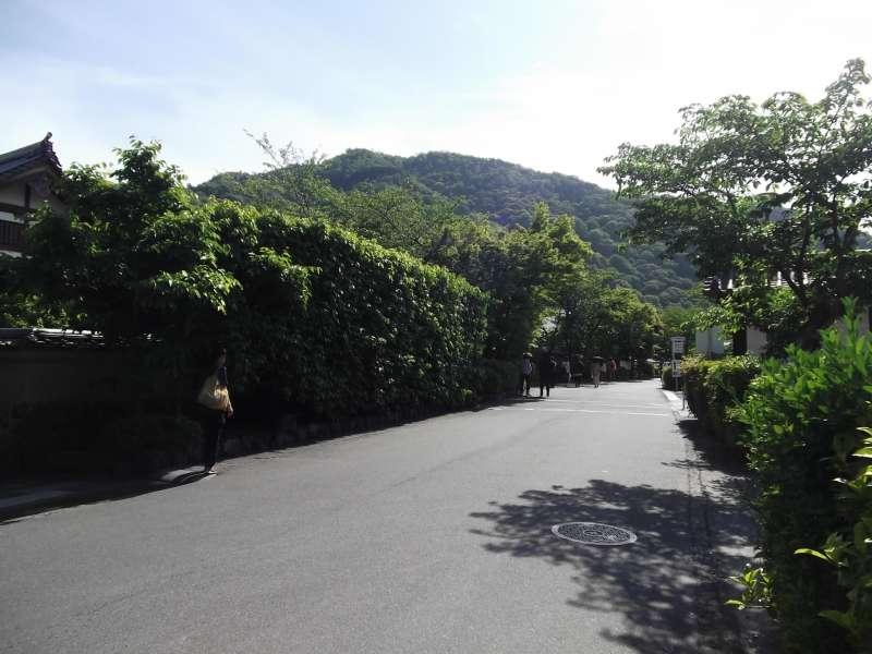 Approach to Tenryuji temple in Arashiyama. Greenery is especially attractive.