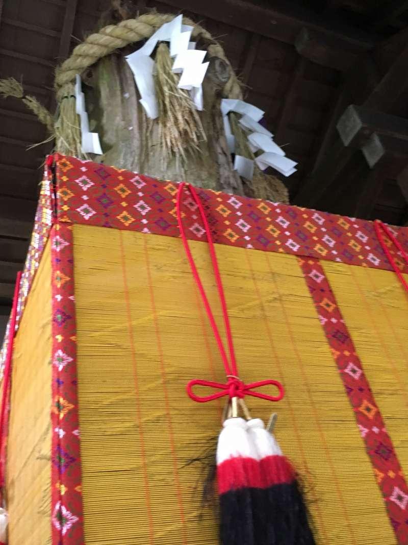 the sacred tree of Mt. Inari