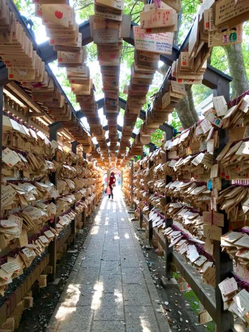 Hikawa Shrine  A lot of