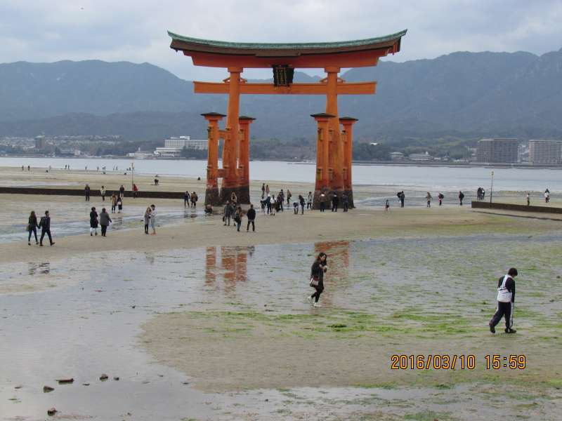 Vermillion Torii Gate at ebb tide