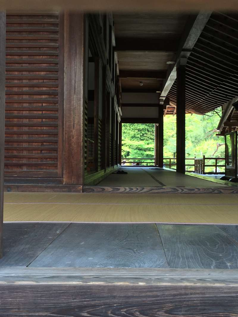 beautiful contrast between the Japanese-style hall and the garden
