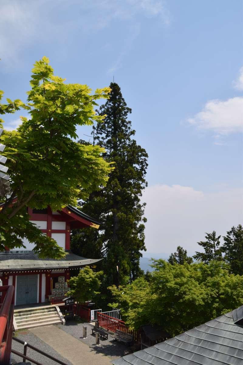 View from Musashi MItake shrine