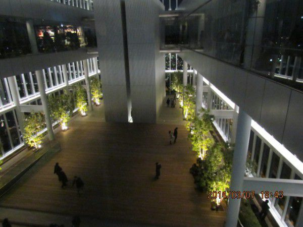 The Sky Garden at the 58th floor of ABENO HARUKAS