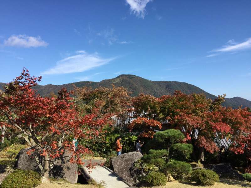 Option#C. Hakone Museum in Autumn color