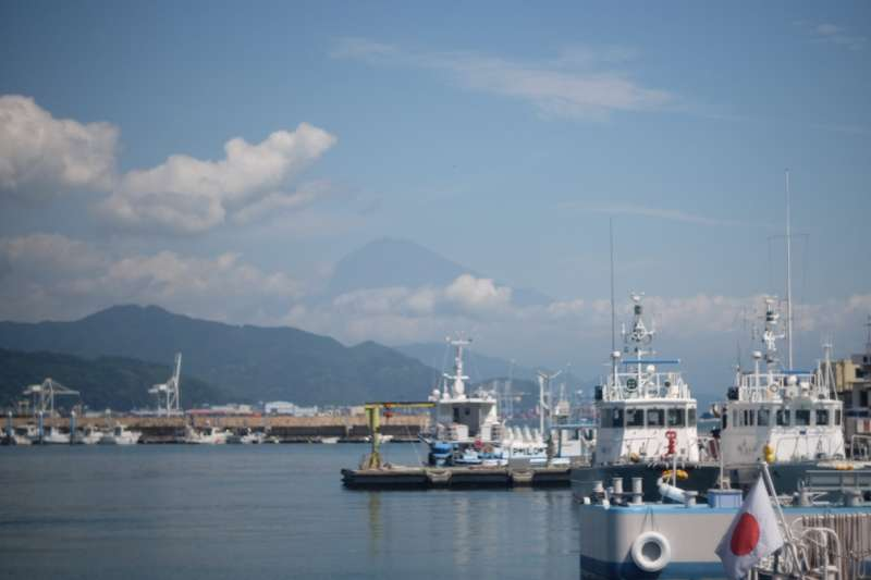 Shimizu Port in summer, with Mt. Fuji in the background
