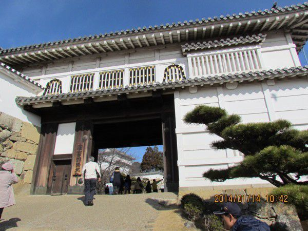 Water Chesnut Gate