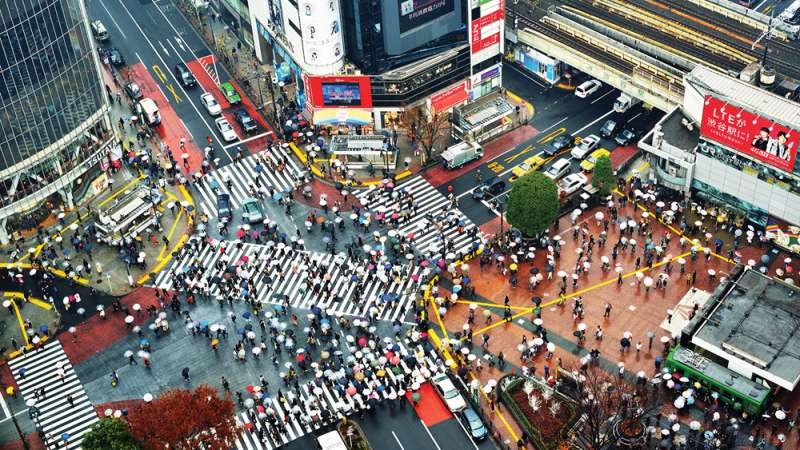 Shibuya crossing: The busiest pedestrian crossing in the world