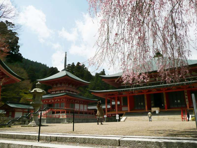 Kyoto history related with various type of Japanese religions transition