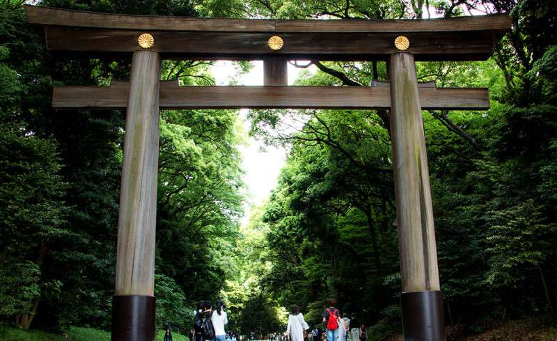 Tokyo 3-day itinerary for first timers