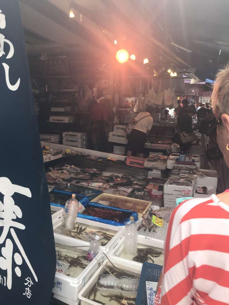 Fish market, Akihabara, Meiji Shrine