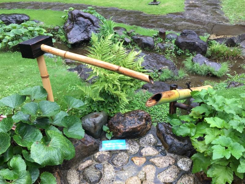 Sound of Japanese Garden