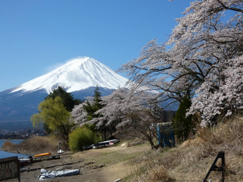 When is the best season to visit Mt.Fuji?