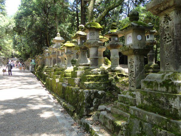 The approach to Kasuga Great Shrine lined with stone lanterns