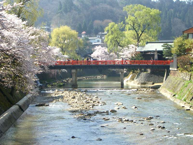 The Miyagawa, which runs through the center of Takayama, shows a variety of seasonal landscapes as a symbol of this town..