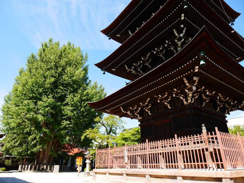 Hidakokubunji is a peaceful spot near the station. A three-storied pagoda and a giant gingko (maidenhair tree) are  popular.